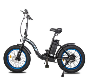 DOLPHIN20 fat tire foldable ebike black frame